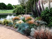 Tuin op de Universiteit van Cambridge Royalty-vrije Stock Foto
