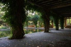 Tuin in parque Marie Luisa Sevilla Spain royalty-vrije stock afbeelding