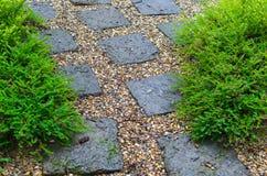 Tuin in regenachtig seizoen Stock Fotografie