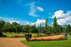 Tuin van bloemen royalty-vrije stock foto