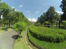 Tuin van Borobudur-Tempel in Magelang Centraal Java stock afbeelding