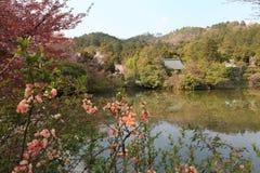 Tuin van de Ryoan -ryoan-ji Tempel, Kyoto, Japan royalty-vrije stock foto