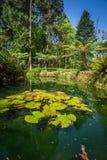 Tuin van Eden-tuin in Sintra, Portugal wordt gevestigd dat stock foto's