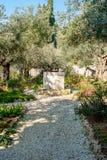 Tuin van Gethsemane Royalty-vrije Stock Afbeeldingen