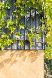 tuin van het zuiden de Duitse plattelandshuisje Stock Foto's