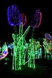 Tuin van Lichten Royalty-vrije Stock Fotografie