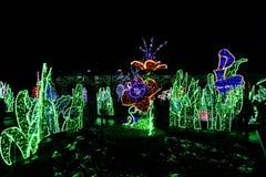 Tuin van Lichten Stock Foto