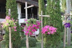Tuin van Nooch van Nong de Tropische Botanische Royalty-vrije Stock Foto