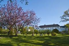 Tuin van Rood Herenhuis dat (in Mei bloeit) Stock Afbeelding