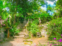 De Magische Tuin : Tan m magie boeddha tuin eiland koh samui thailand royalty vrije