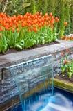 Tuin van Tulpen en Waterval Stock Foto's