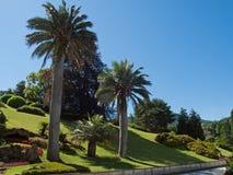 Tuin van villa Melzi Royalty-vrije Stock Afbeelding