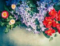 Tuinbloemen op grijze achtergrond, hoogste mening Royalty-vrije Stock Foto