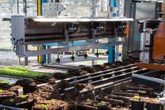 Tuinbouw die machines planten Royalty-vrije Stock Afbeelding