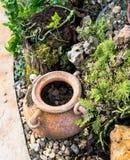 Tuindecoratie door aardewerkkruik, aardewerkwaterkruik Stock Fotografie