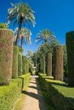 Tuinen in Alcazar, Sevilla, Andalucia, Spanje Stock Foto