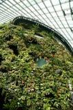Tuinen door de baai Royalty-vrije Stock Afbeeldingen