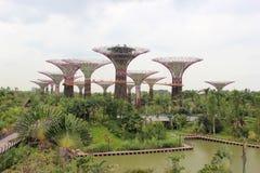 Tuinen door de Baai, een integraal onderdeel van een strategie door Singap Royalty-vrije Stock Foto's