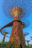 Tuinen door de baai Singapore Royalty-vrije Stock Foto's