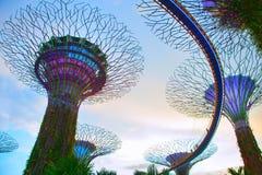 Tuinen door de Baai, Singapore Stock Afbeelding