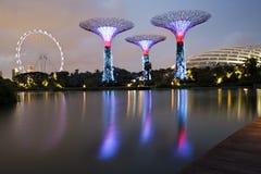 Tuinen door de Baai & van Singapore Vlieger, Singapore Royalty-vrije Stock Afbeelding