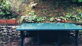 Tuinen en seizoenen Stock Foto