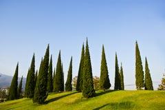 Tuinen op de berg Stock Foto's