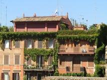 Tuinen op de daken royalty-vrije stock afbeeldingen