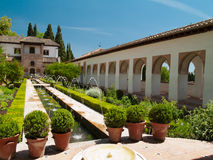 Tuinen van Alhambra, Granada, Spanje stock fotografie
