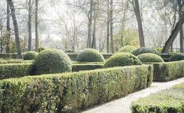 Tuinen van de stad van Aranjuez, in Spanje wordt gevestigd dat Steenpaleis Stock Foto