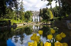 Tuinen van Villa d'Este in Tivoli - Italië Royalty-vrije Stock Fotografie