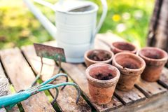 Tuinhulpmiddelen en bloempotten in de tuin Royalty-vrije Stock Foto