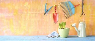 Tuinhulpmiddelen, jonge plant stock afbeeldingen