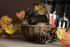 Tuinhulpmiddelen voor de herfst Royalty-vrije Stock Afbeelding