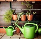 Tuinierend op het balkon, de gieters en de installaties stock afbeeldingen
