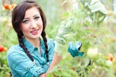 Tuinierende vrouw Stock Foto's