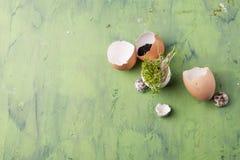 Tuinkerssalade met shell eieren op de groene achtergrond Concept het gezonde eten Stock Fotografie