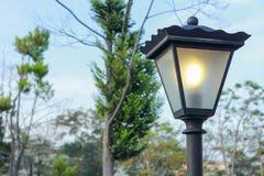 Tuinlamp stock foto