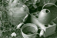 Tuinlandschap Stock Foto