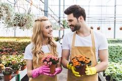 Tuinlieden die beschermende handschoenen dragen en bloeiende bloemen houden Royalty-vrije Stock Afbeelding