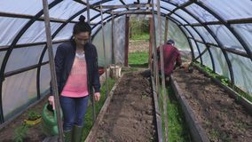 Tuinlieden die in serre werken stock videobeelden