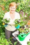 Tuinman actief hoger bejaarde met potten van bloemen Royalty-vrije Stock Afbeeldingen