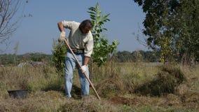 Tuinman die in de tuin werken stock video