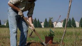 Tuinman die in de tuin werken stock footage