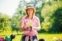 Tuinman die haar installaties in een tuin behandelen Stock Foto's