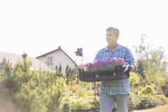 Tuinman die terwijl het dragen van krat van bloempotten in tuin lopen Stock Afbeeldingen