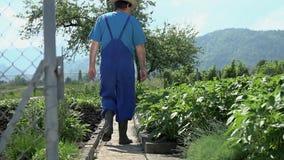Tuinman die in zijn tuin lopen stock footage