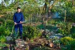 Tuinman het water geven bloemen Royalty-vrije Stock Afbeelding