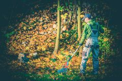 Tuinman Leaves Raking stock fotografie
