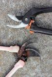 Tuinman pruner Twee pruners die op beton liggen stock afbeelding